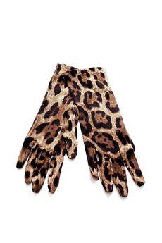 Перчатки DOLCE & GABBANA FAG97KF05AU/14.1. Купить за 9950 руб.